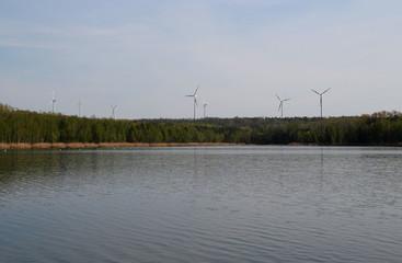 Ein Windpark in Sachsen Anhalt