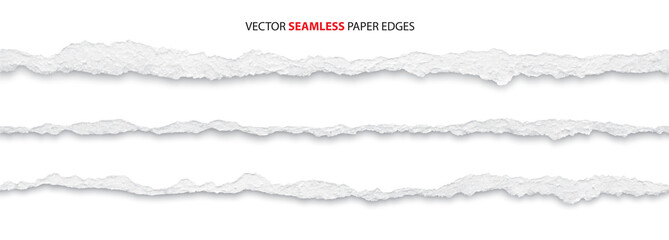 realistic torn paper edges, vector illustration