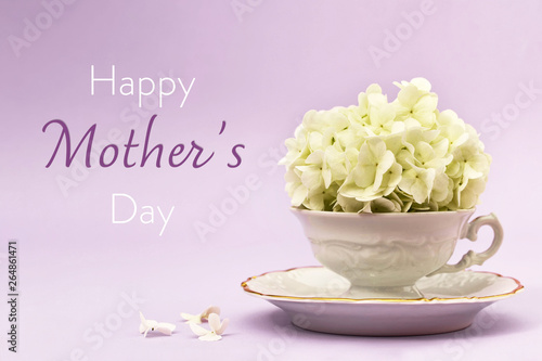 Happy Mothers Day card. Snowball flower in vintage tea cup