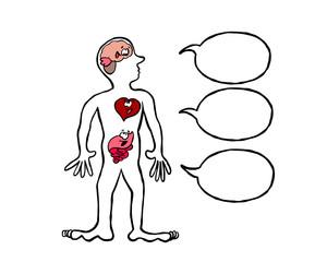 Three brains speaking : brain, heart and gut