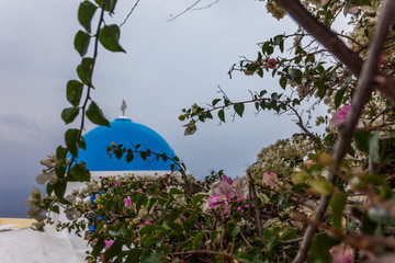 Detail of blue dome and bougainvillea in the village of Oia