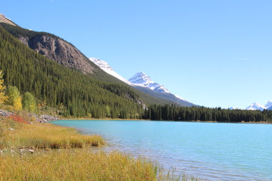 Shoreline Of Waterfowl Lake, Banff National Park, Alberta