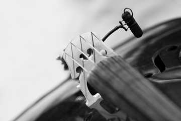 Wall Mural - Fragment of a violin with a microphone close-up in black and white