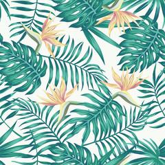 Tropical leaves blue tone bird of paradise white background
