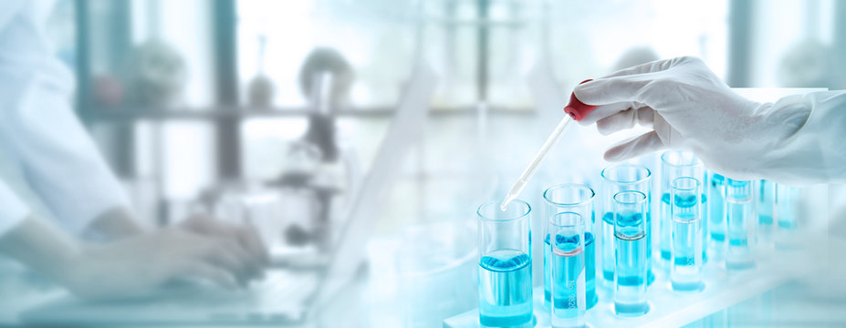 Test tubes with liquid in laboratory, Doctor hand holding dropper with dripping or transparent glass pipette, dropper for instillation. scientist working in laboratory. Banner for website advertising.