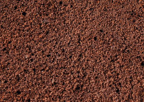 Sponge cake of chocolate close up macro