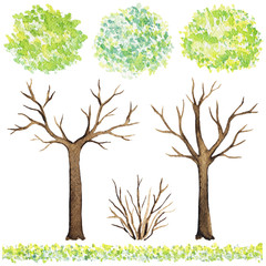 Set of elements of trees, grass and bushes isolated on white background. Watercolor hand painted illustration