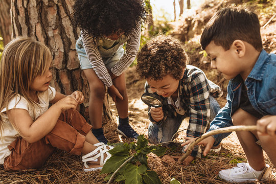 Kids exploring in forest with a magnifying glass