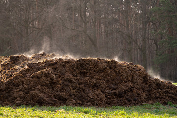 A pile of manure on an agricultural field for growing bio products Fototapete