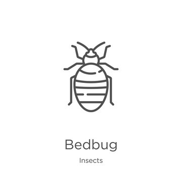 bedbug icon vector from insects collection. Thin line bedbug outline icon vector illustration. Outline, thin line bedbug icon for website design and mobile, app development.