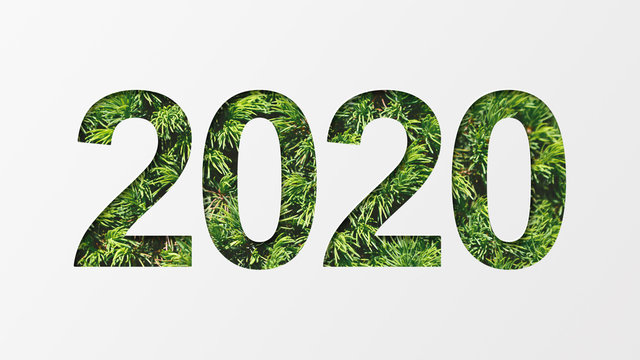 2020 with green tree texture
