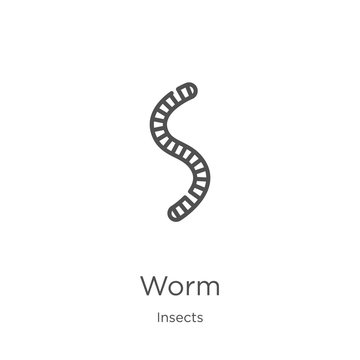 worm icon vector from insects collection. Thin line worm outline icon vector illustration. Outline, thin line worm icon for website design and mobile, app development.