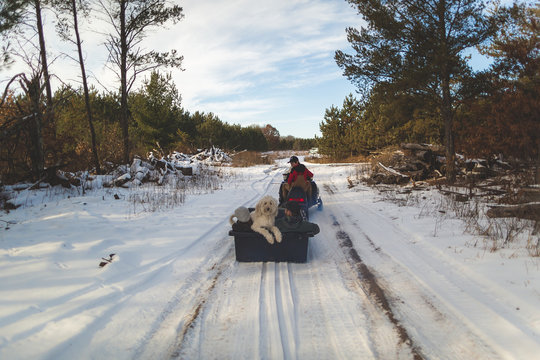 Taking snowmobile and sled to cut down our Christmas tree