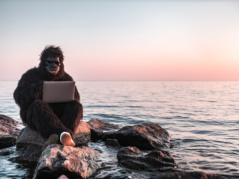 A man in a monkey costume at sunset near the sea works on a computer against the backdrop of a modern skyscraper. Animal programmer does the job