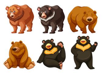 Set of cute bears