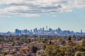 Sydney City Skyline and Suburbs from South West Wall mural