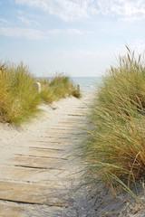 nature walk to the sandy beach