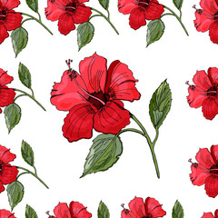 Seamless pattern with hand drawn and colored hibiscus flower. Objects isolated on white background.