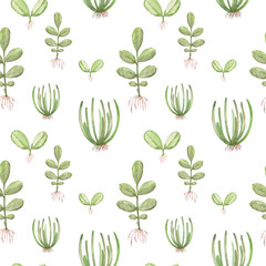 watercolor pattern with different saplings 12