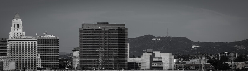 Hollywood to City Hall