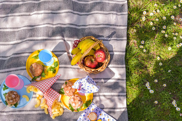 A basket of fruit and sandwiches for a picnic outdoors in the park. Nice sunny day and summer lunch.