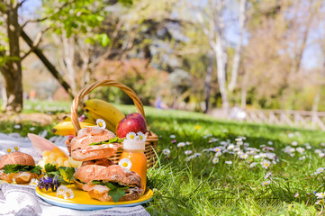 Picnic on the green grass in the park. Nice summer sunny day and food outdoors.