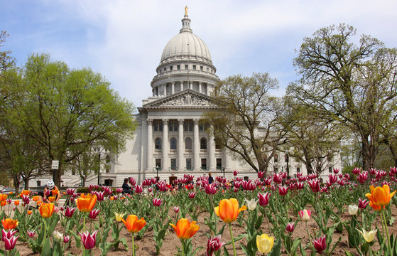 Wisconsin State Capitol building spring view with flower bed with bright tulips on a foreground. City of Madison, the capital of Wisconsin, Midwest USA.