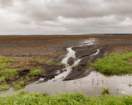Heavy rains in the Midwest are causing flooding of farm fields and delaying planting of corn and beans