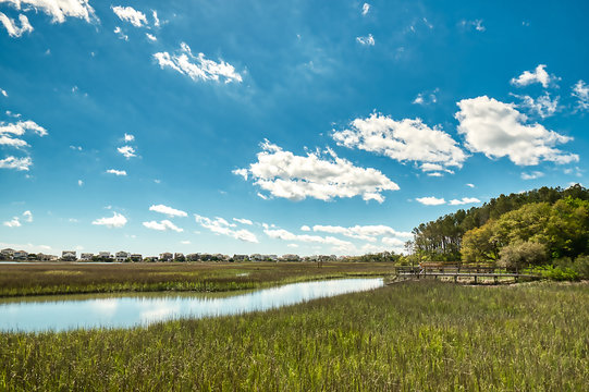 Puffy white clouds and blue sky over a salt-marsh at Pawleys Island.