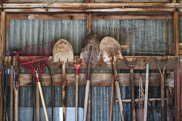 Garden tools hanging in a row in a shed; shovels and rakes hooked on a wooden beam in a line
