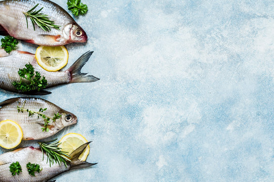 River Fish Background