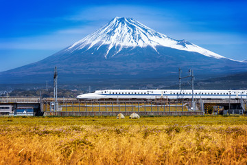 Wall Mural - Fuji mountains and high-speed train in Shizuoka, Japan.