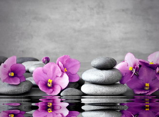 Pink flower and stone zen spa on grey background