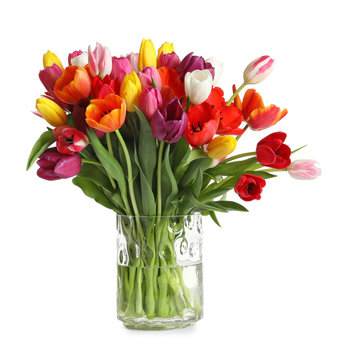 Vase with beautiful spring tulip flowers on white background