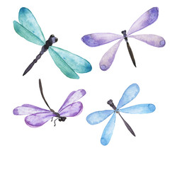 Blue and lilac dragonfly collection. Hand drawn watercolor illustration.