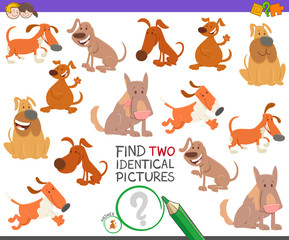 find two identical dogs task for children