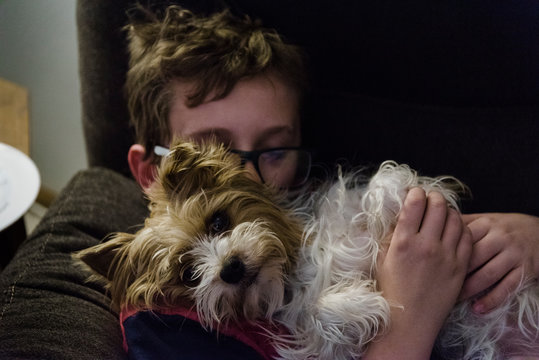 Parti Yorkie getting a hug from a teen boy.