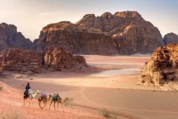 Poster Kameel Beduin and camels in Wadi Rum desert in Jordan