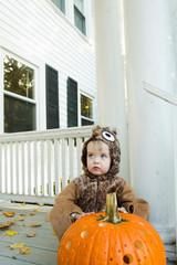 Portrait of cute toddler boy dress up as an owl for Halloween