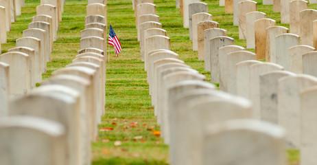 American flag planted in veterans cemetery