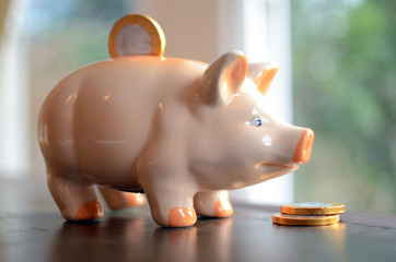 Coin in slot of piggy bank