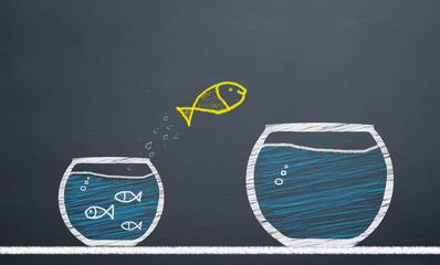 innovative concept. fish switch from aquarium to larger aquarium
