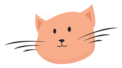 Portrait of the face of a brown cat vector or color illustration