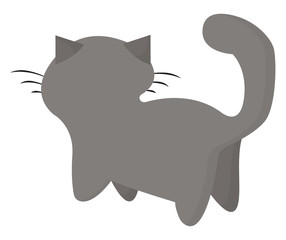 Painting of a grey cat set on an isolated white background and viewed from the back vector or color illustration