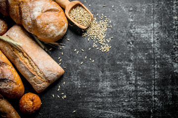 Different types of bread with grain.