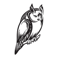 Hand drawn sitting owl outline sketch. Vector bird animal black ink drawing isolated on white background. Graphic illustration