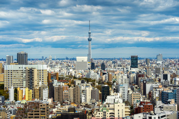 Fototapete - Panorama of Tokyo cityscape in Japan.