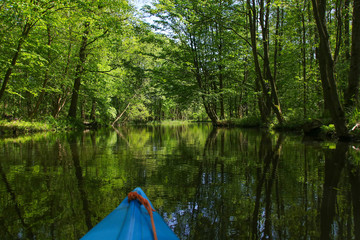 Paddle in Spree Forest (Spreewald),  Germany