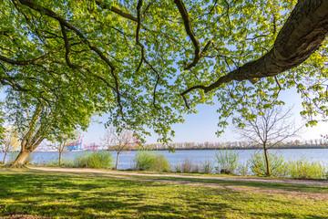 Park und Wanderweg an der Elbe in Hamburg