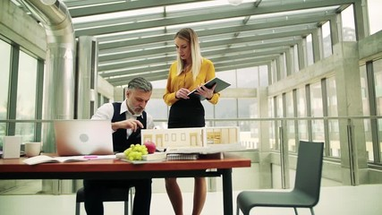 Wall Mural - Two architects with model of a house in office, talking. Slow motion.